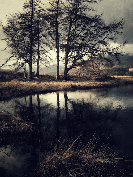 the-tree-mag_iphoneonly-Etive-by-Julian-Calverley_110.jpg