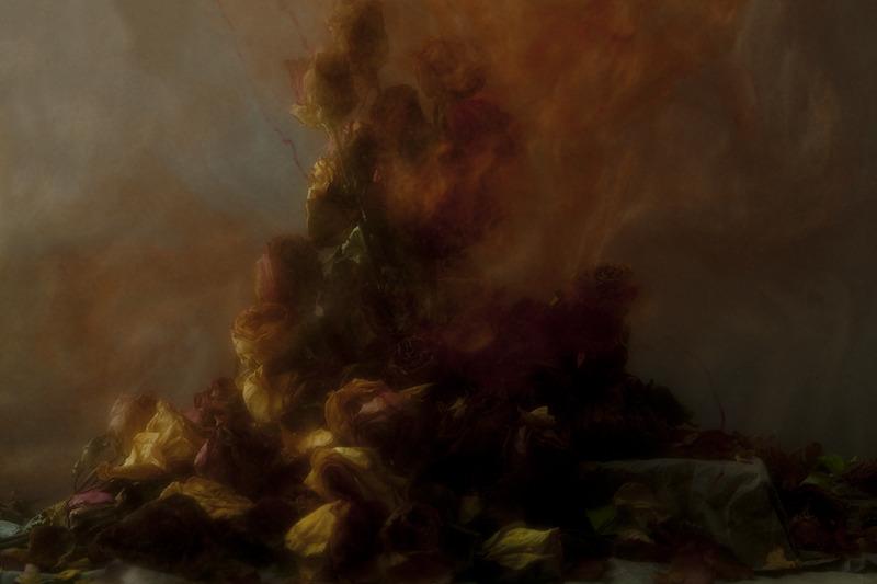 the-tree-mag_stamen-by-nicholas-alan-cope-dustin-edward-arnold_110.jpg