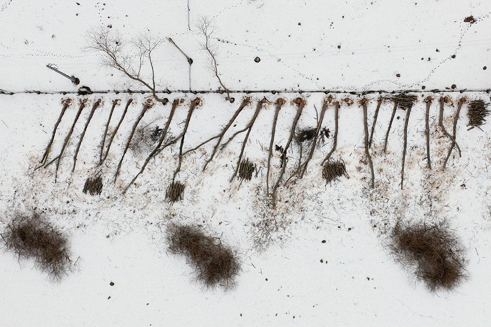 the-tree-mag_kacperkowalski-com_harsh-winter_02.jpg