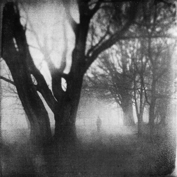 the-tree-mag_zewar-fadhil_50.jpg