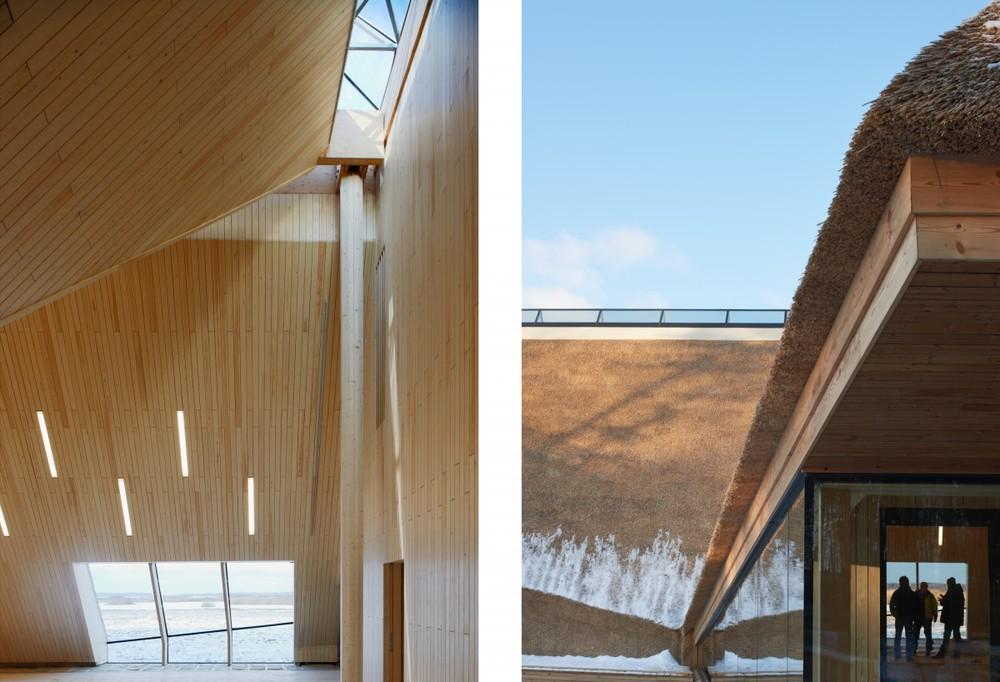 the-tree-mag_naturum-tkern-visitor-centre-by-wingrdh-arkitektkontor-ab_30.jpg
