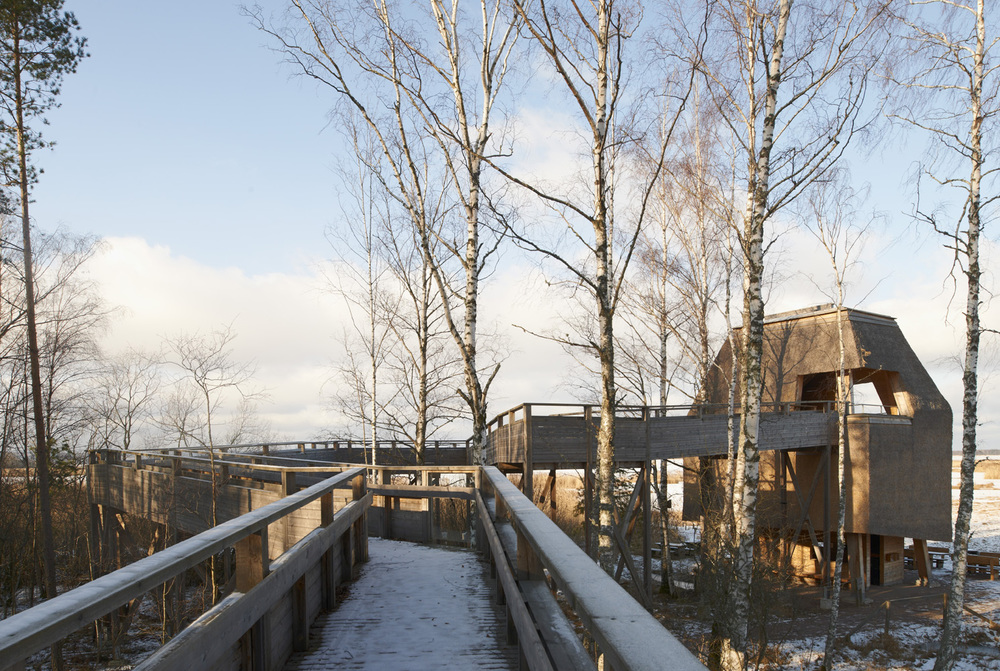 the-tree-mag_naturum-tkern-visitor-centre-by-wingrdh-arkitektkontor-ab_50.jpg
