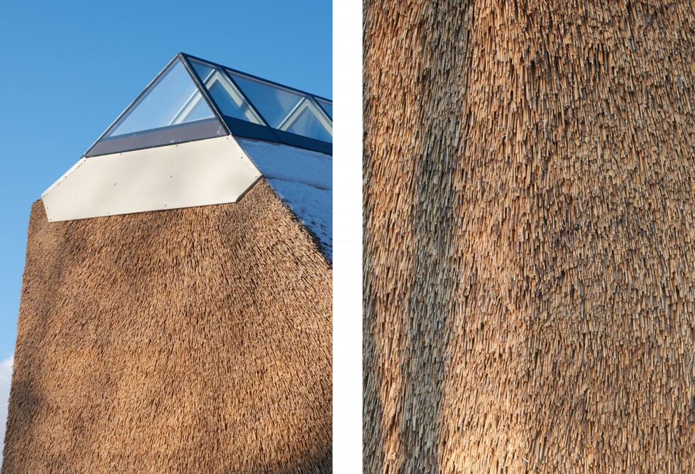 the-tree-mag_naturum-tkern-visitor-centre-by-wingrdh-arkitektkontor-ab_130.jpg