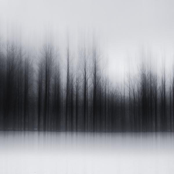 the-tree-mag_jrgen-heckel_90.jpg