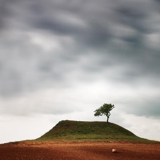 the-tree-mag_gundula-walz_150.jpg