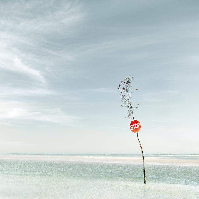 the-tree-mag_gundula-walz_180.jpg
