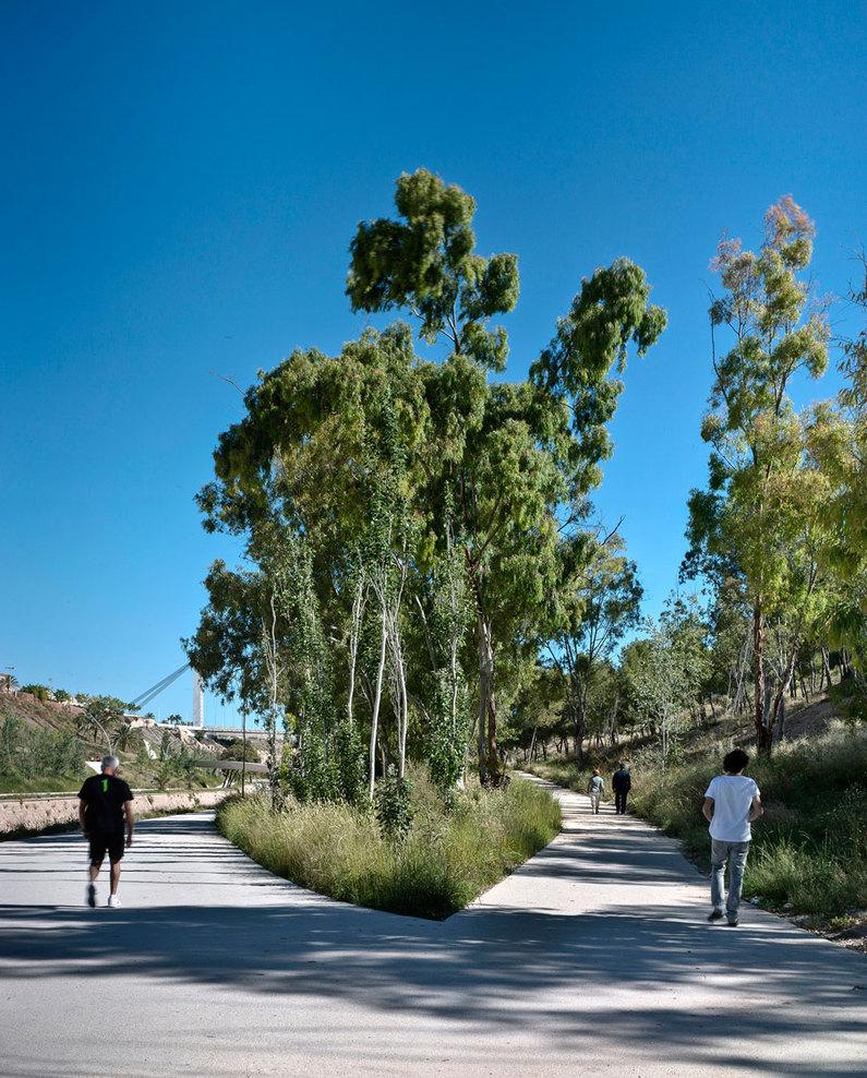 the-tree-mag_el-valle-trenzado-by-grupo-aranea_60.jpg