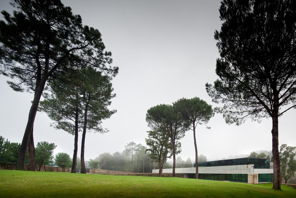 the-tree-mag_two-houses-in-mono-by-joo-paulo-loureiro_70.jpg