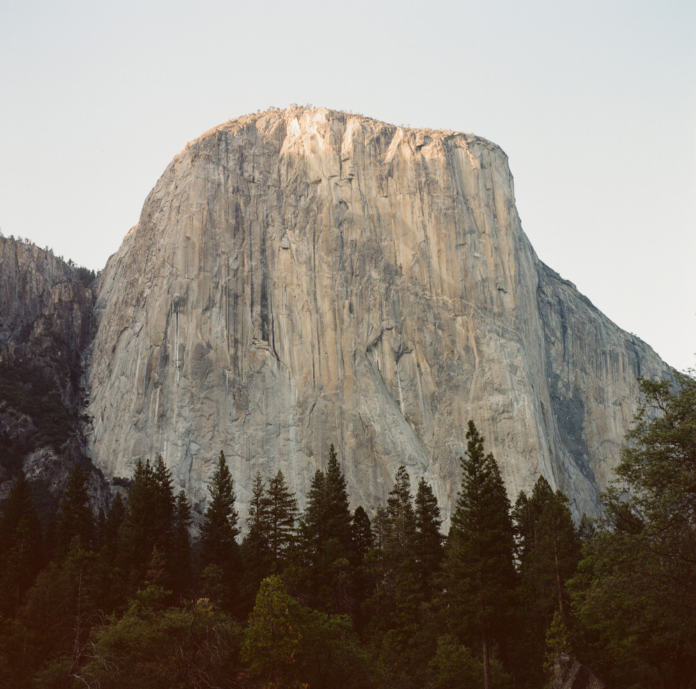 the_tree_mag-yosemite-national-park-by-cody-william-smith_60.jpg