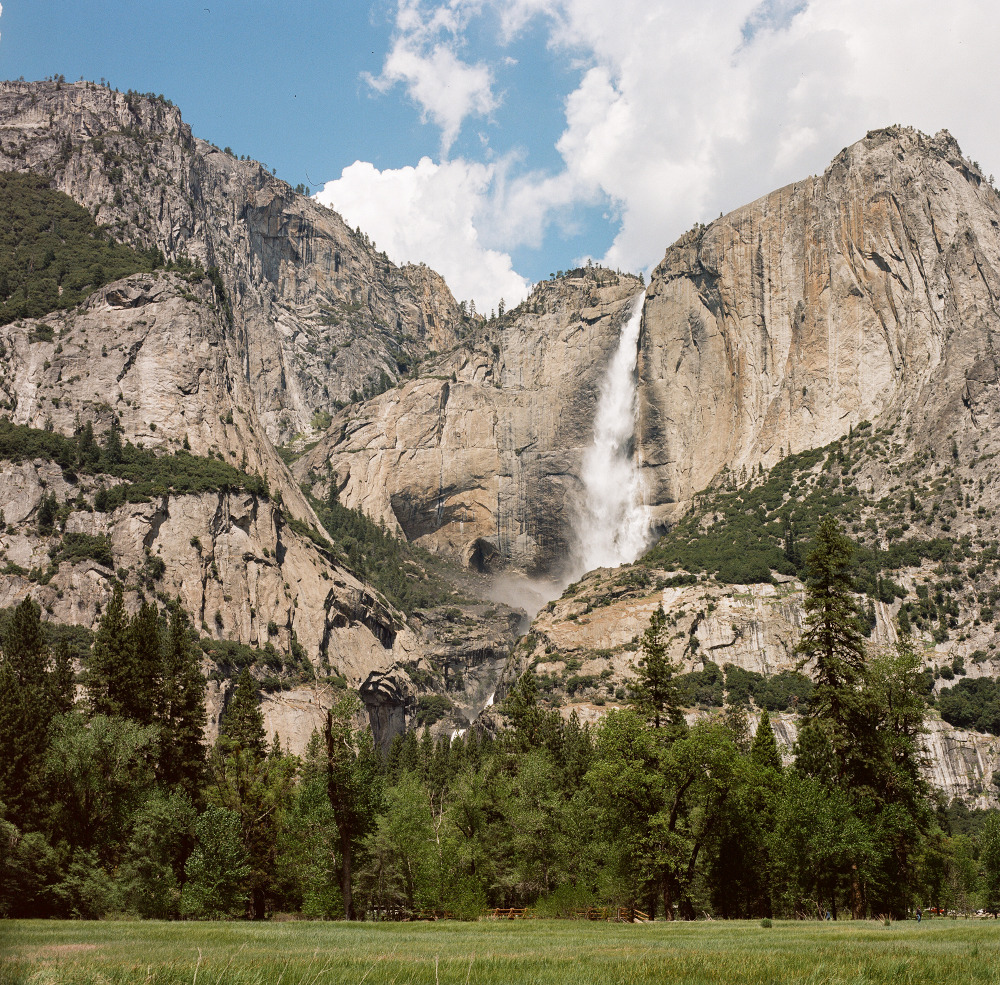 the_tree_mag-yosemite-national-park-by-cody-william-smith_70.jpg
