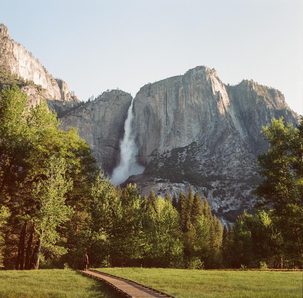 the_tree_mag-yosemite-national-park-by-cody-william-smith_100.jpg