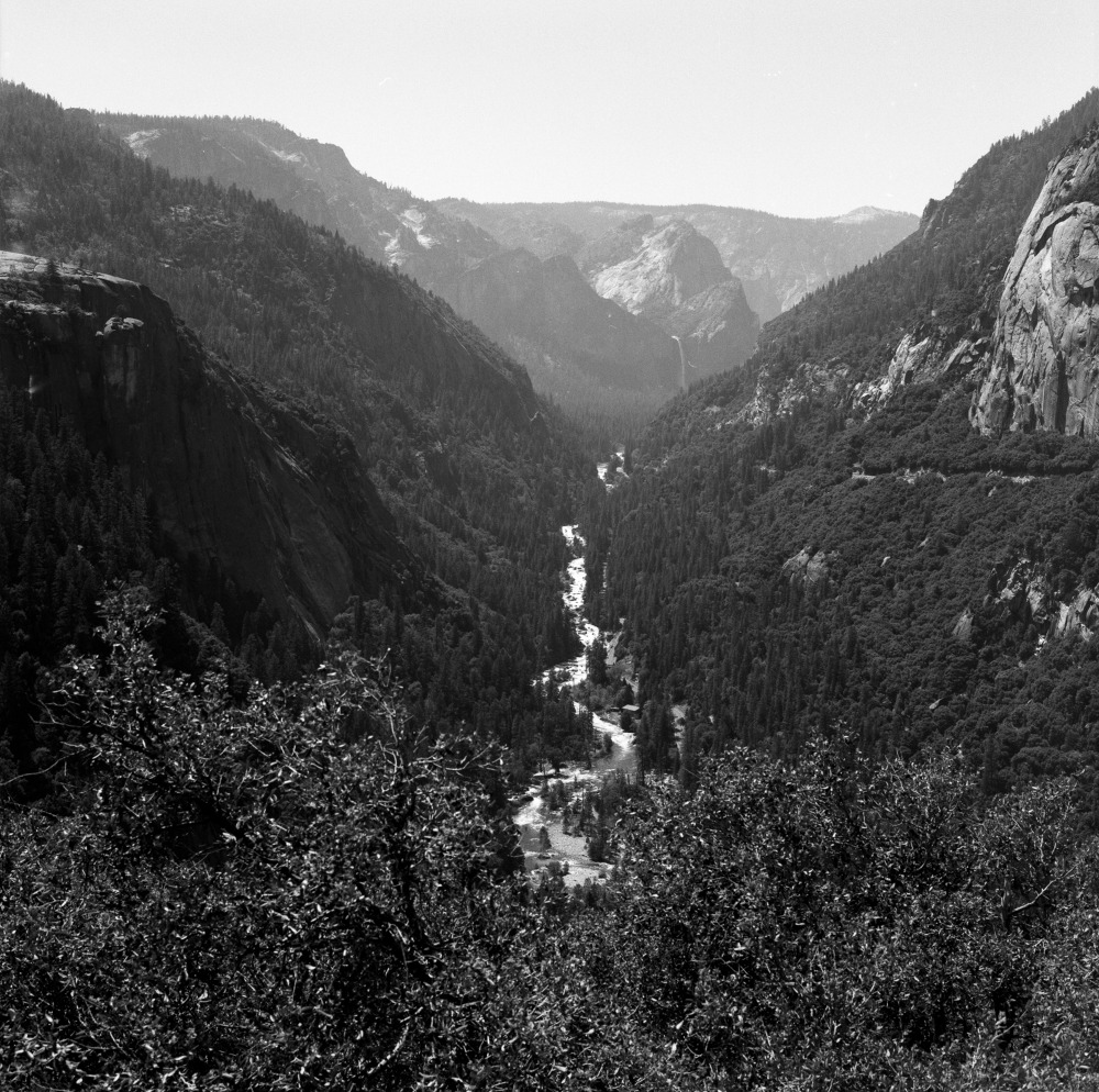 the_tree_mag-yosemite-national-park-by-cody-william-smith_120.jpg