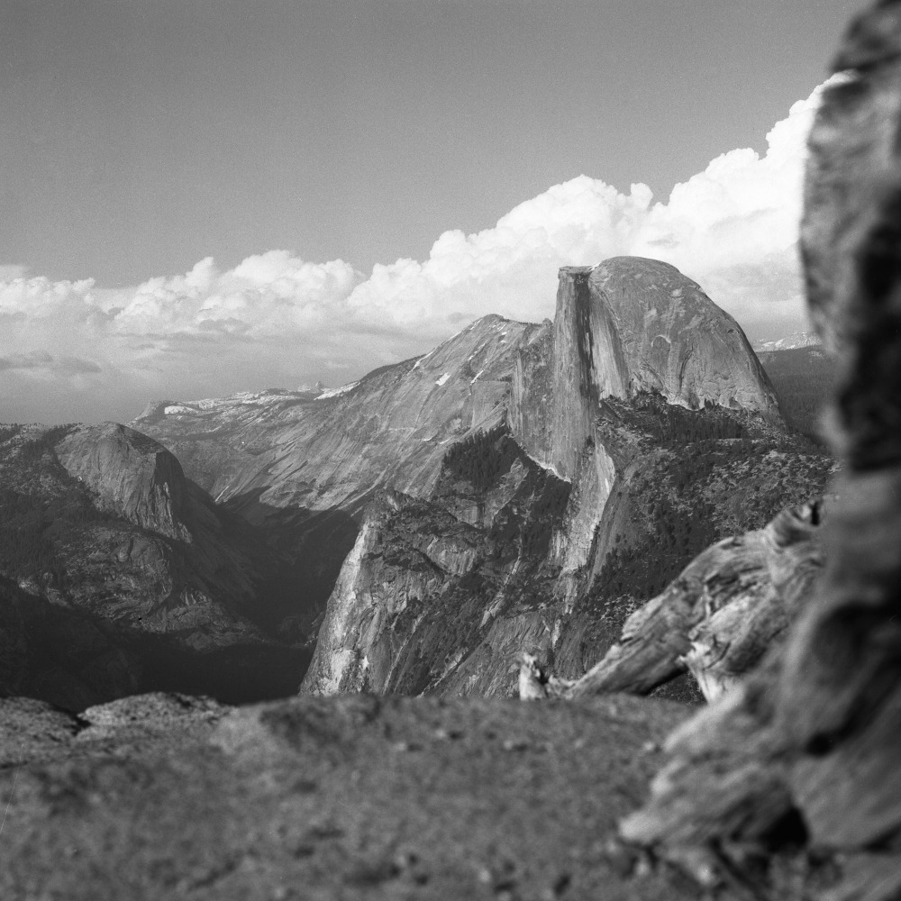 the_tree_mag-yosemite-national-park-by-cody-william-smith_140.jpg