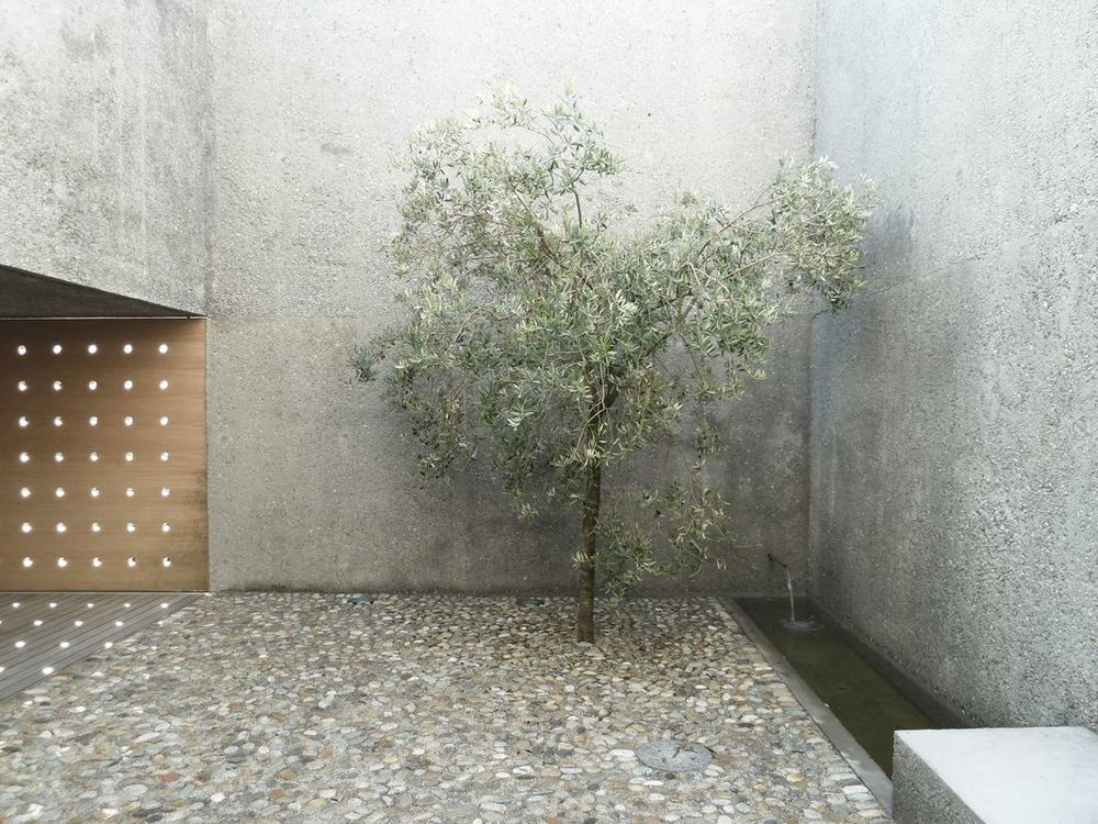 the-tree-mag_casa-ri-by-wespi-de-meuron-romeo_60.jpg