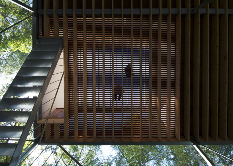 the-tree-mag_house-in-a-forest-by-go-hasegawa_50.jpg
