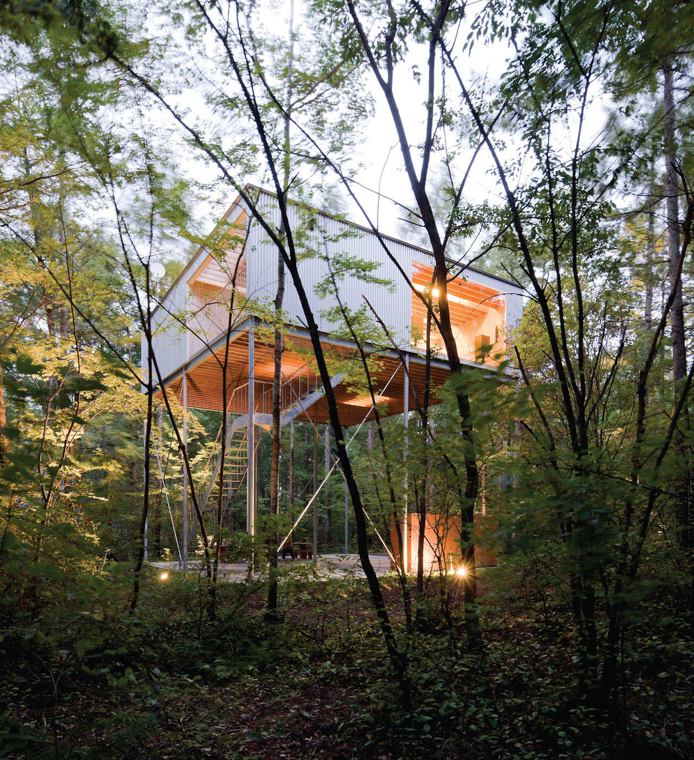 the-tree-mag_house-in-a-forest-by-go-hasegawa_150s.jpg