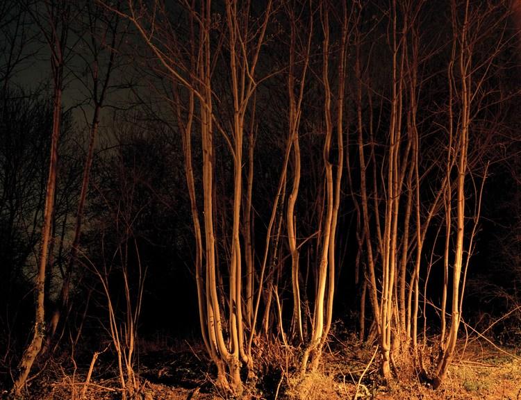 the-tree-mag_paul-seawright_80.jpg