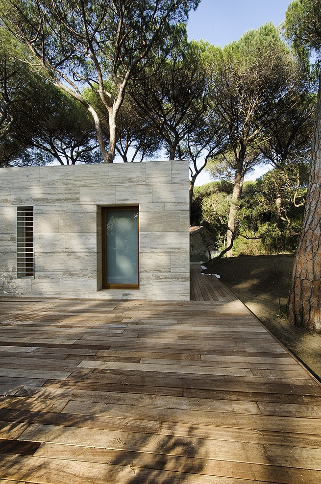 the-tree-mag_pinewood-of-marina-by-massimo-fiorido-associati-sundaymorning_60.jpg
