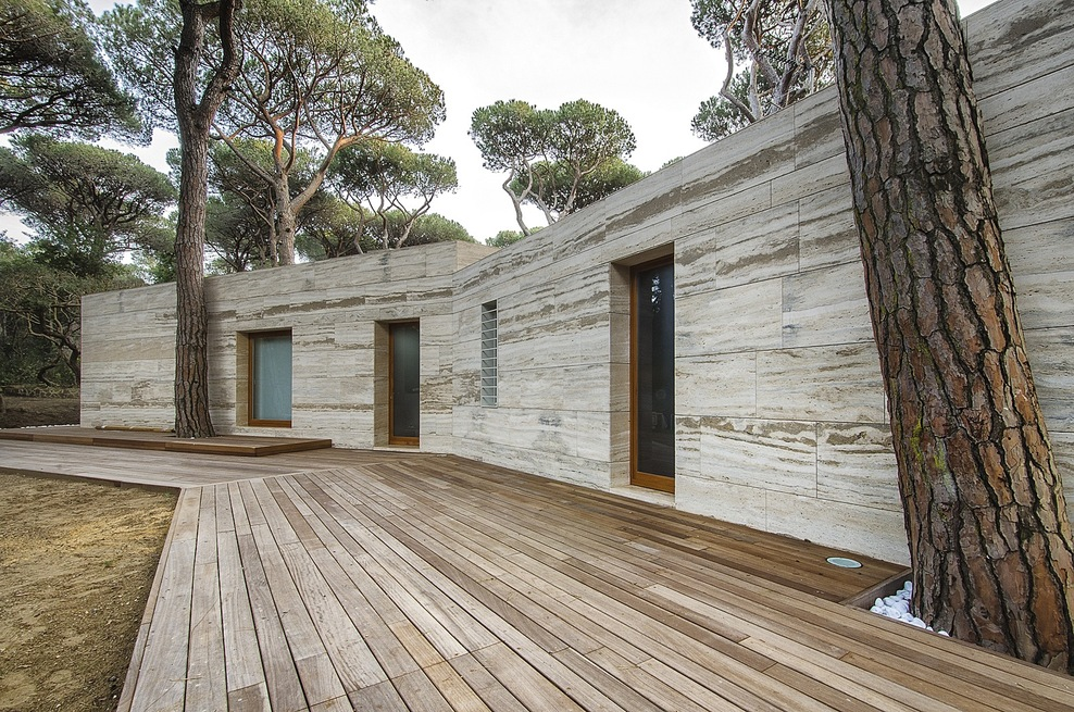 the-tree-mag_pinewood-of-marina-by-massimo-fiorido-associati-sundaymorning_110.jpg
