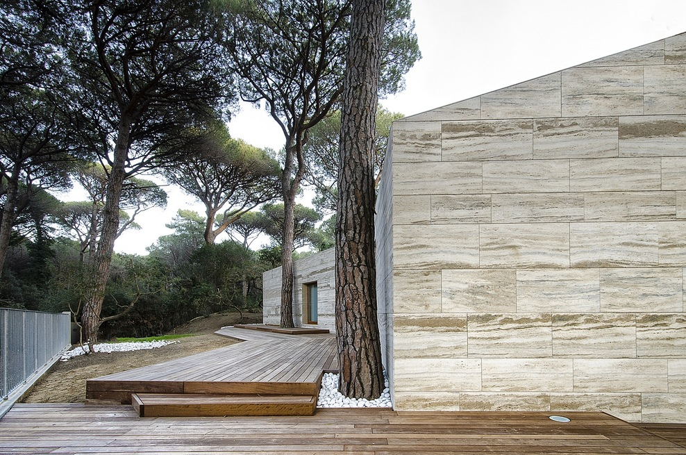 the-tree-mag_pinewood-of-marina-by-massimo-fiorido-associati-sundaymorning_130.jpg