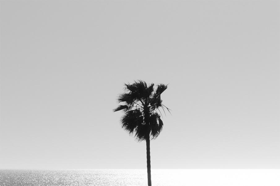 the-tree-mag_Brian-Biles_40.jpg