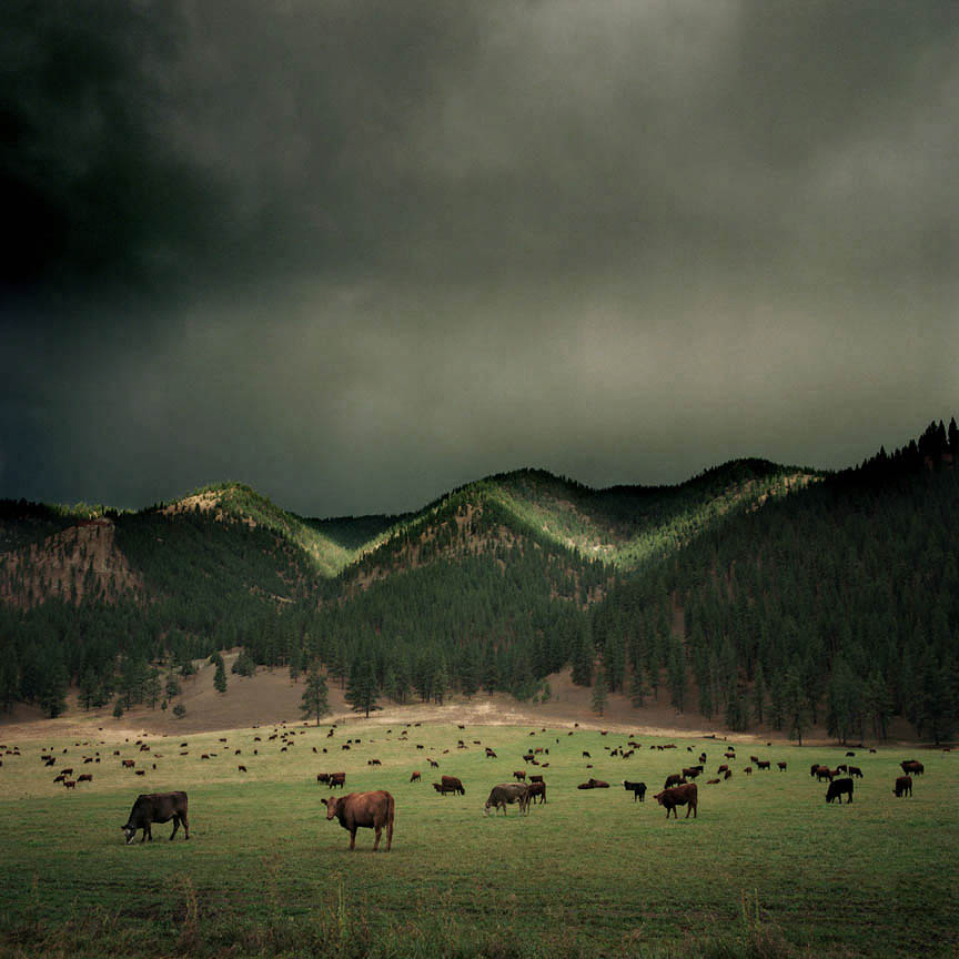 the-tree-mag_landscapes-by-michael-eastman_80.jpg
