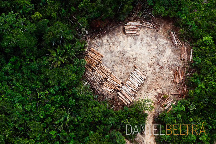 the-tree-mag_amazon-by-daniel-beltra_10.jpg