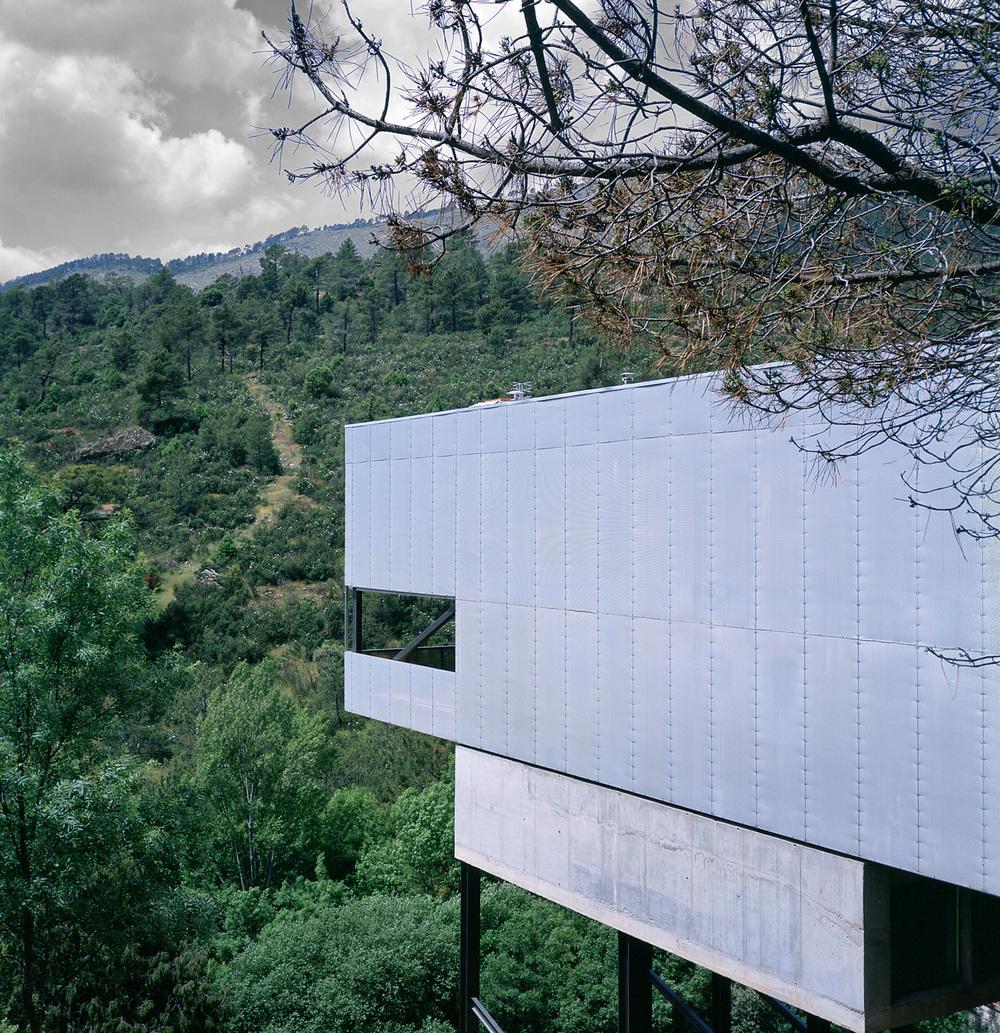 the-tree-mag_Paz House by Arturo Franco + Fabrice van Teslaar_20.jpg