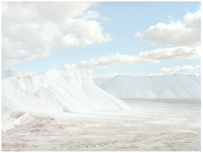 the-tree-mag_salt-by-emma-phillips_10.png