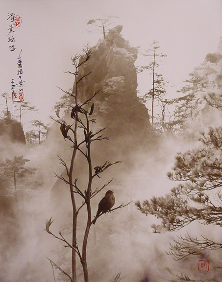 the-tree-mag-Don Hong-Oai_30.jpg