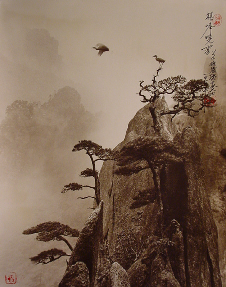 the-tree-mag-Don Hong-Oai_50.jpg