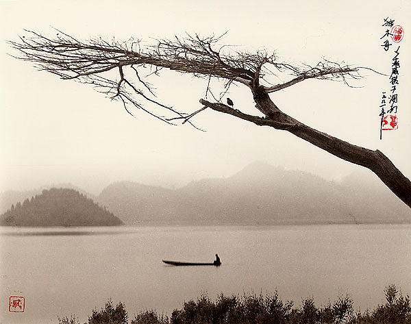 the-tree-mag-Don Hong-Oai_120.jpg