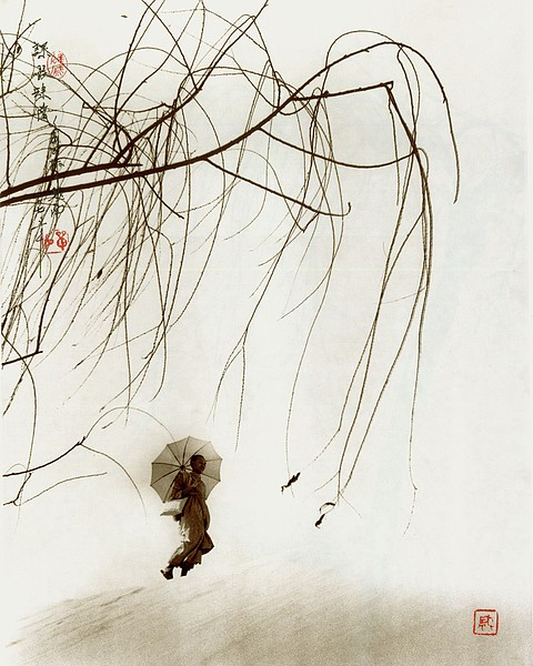 the-tree-mag-Don Hong-Oai_150.jpg