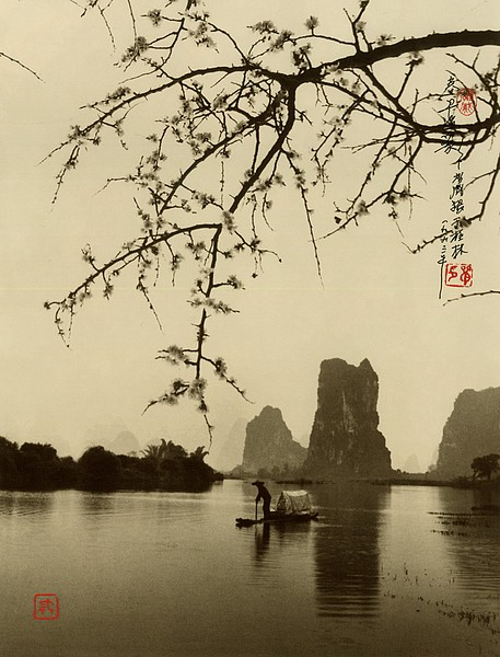 the-tree-mag-Don Hong-Oai_180.jpg