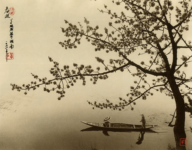 the-tree-mag-Don Hong-Oai_190.jpg