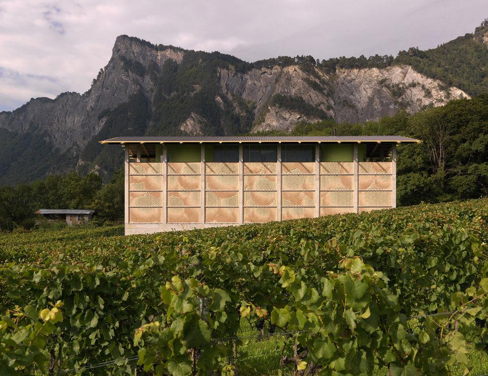 the-tree-mag_gantenbein-vineyard-facade-by-gramazio-kohler_10.jpg