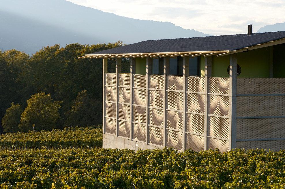 the-tree-mag_gantenbein-vineyard-facade-by-gramazio-kohler_60.jpg