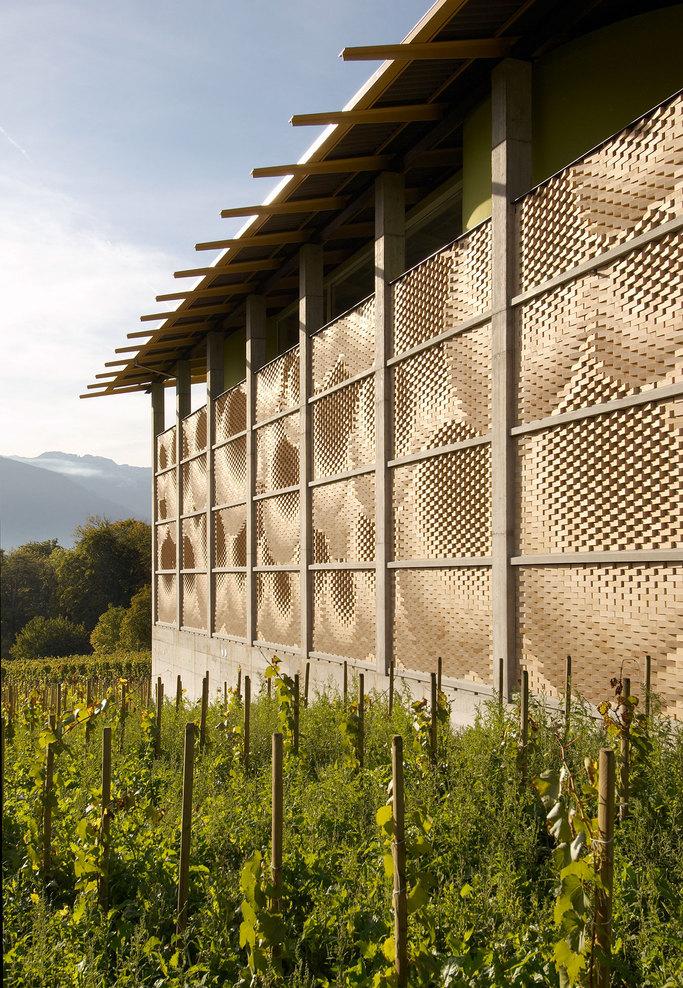 the-tree-mag_gantenbein-vineyard-facade-by-gramazio-kohler_70.jpg