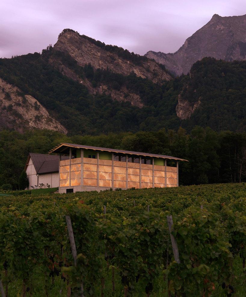 the-tree-mag_gantenbein-vineyard-facade-by-gramazio-kohler_80.jpg