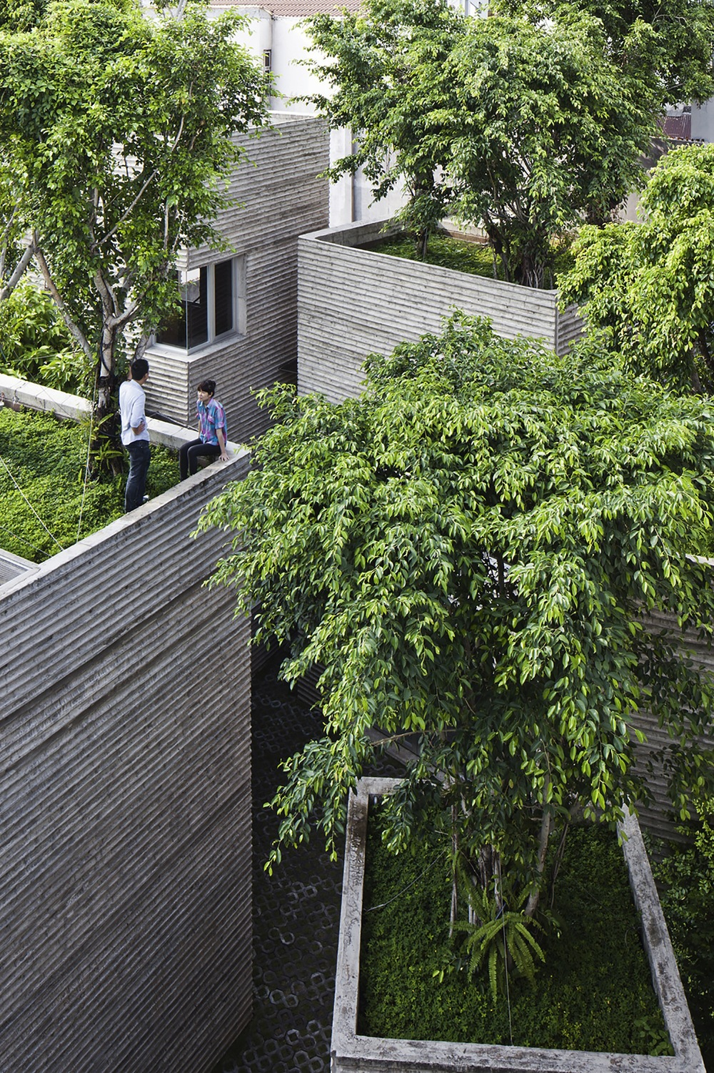 the-tree-mag_House for Trees by Vo Trong Nghia Architects_100.jpg