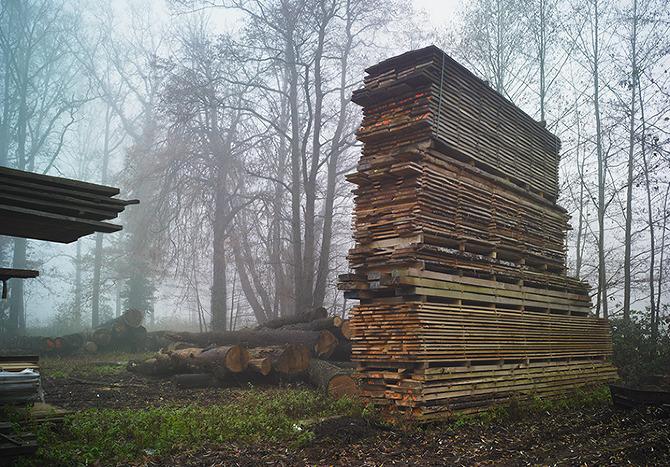 the-tree-mag_landscape-by-mathijs-labadie_30.jpg