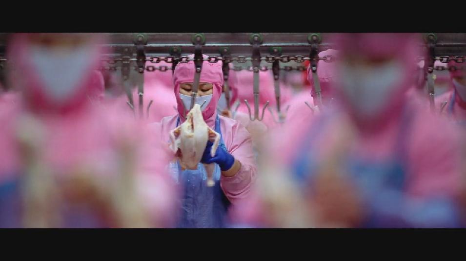 SAMSARA food sequence on Vimeo (8).jpg