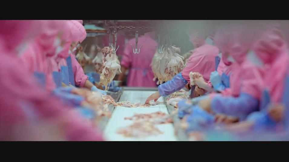 SAMSARA food sequence on Vimeo (9).jpg