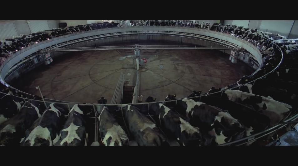 SAMSARA food sequence on Vimeo (11).jpg