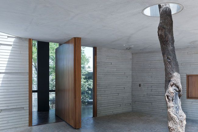 the-tree-mag_casa-ventura-by-tatiana-bilbao_45.jpg
