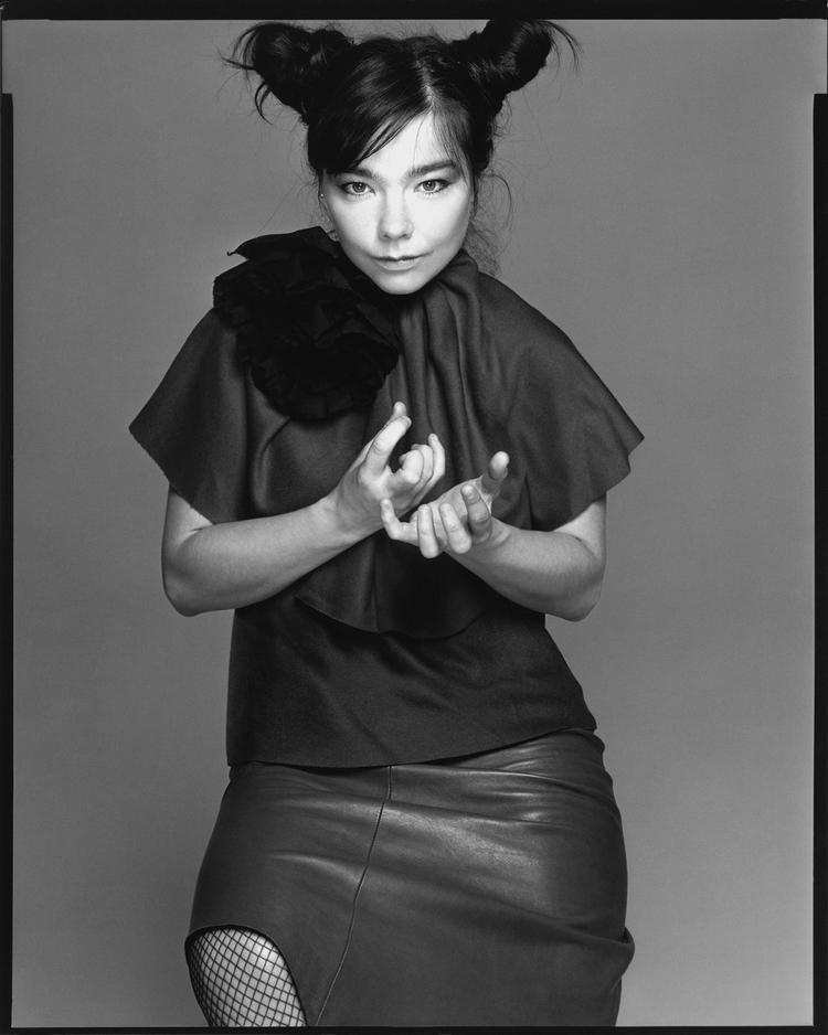 Björk, singer, New York, June 18, 2000_CC2.jpg
