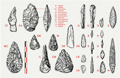 the-tree-mag_flint-by-bibliotheque_135.jpg
