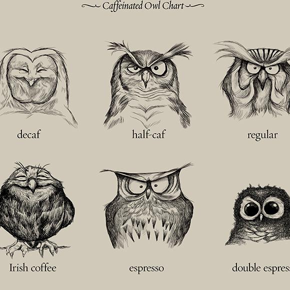 owlsies.jpg