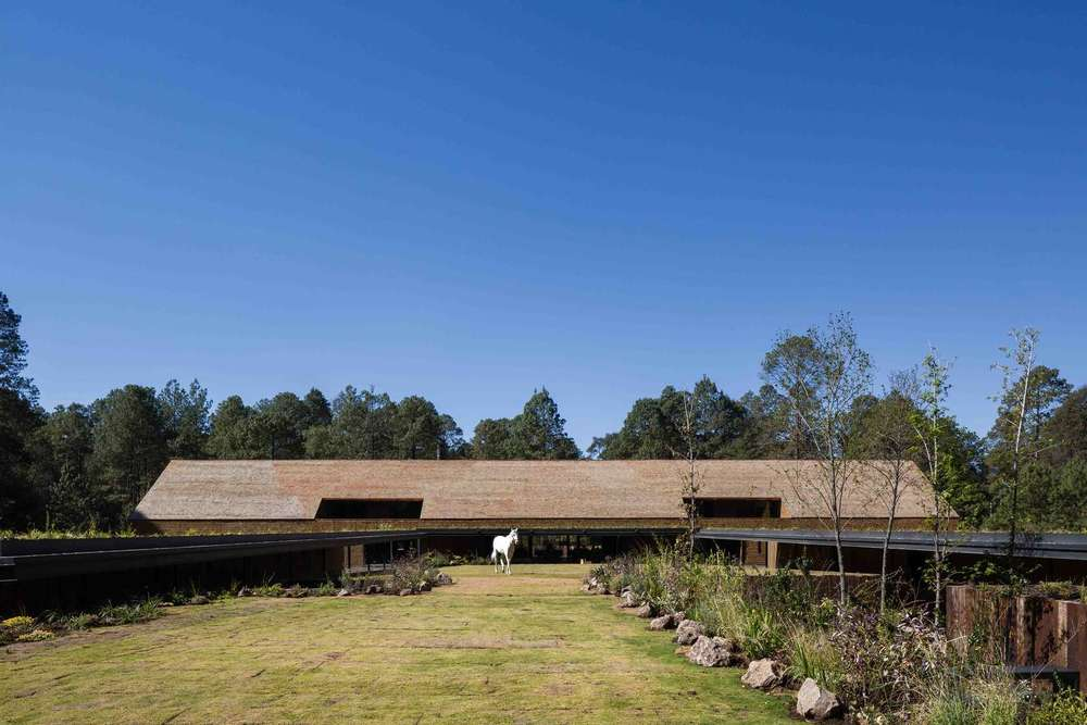 the-tree-mag-equestrian-project-by-cc-arquitectos-60.jpg