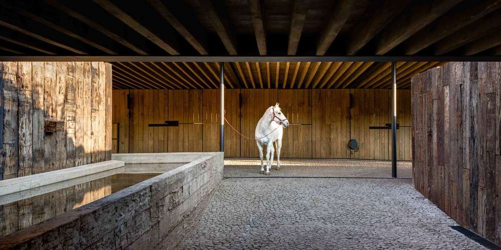 the-tree-mag-equestrian-project-by-cc-arquitectos-80.jpg